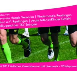 Flyer Ruckseite_2017